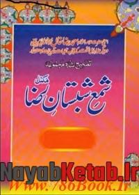دانلود کتاب شمع شبستان رضا