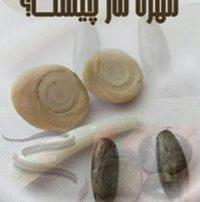 ۲۳۰-۳۳۰-mohrah-mar-chist